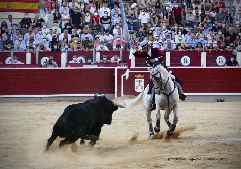 Galería fotográfica Feria Taurina de Albacete 2021. 12 de Septiembre. Fotografía de Agustín Zamora