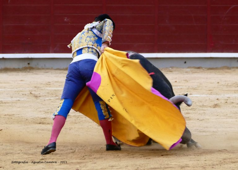 Galería fotográfica Feria Taurina de Albacete 2021. 14 de Septiembre. Fotografía de Agustín Zamora