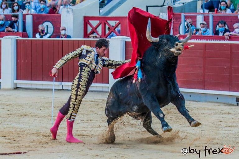 Galería fotográfica Feria Taurina de Albacete 2021. 8 de Septiembre. Fotografía de J.M Fresnedaº