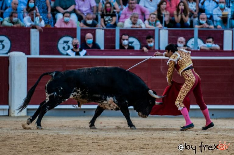 Galería fotográfica Feria Taurina de Albacete 2021. 9 de Septiembre. Fotografía de J.M Fresneda