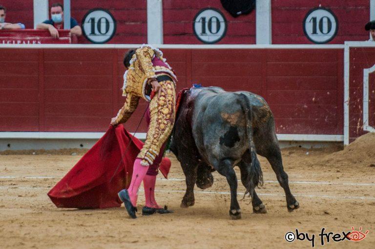 Galería fotográfica Feria Taurina de Albacete 2021. 14 de Septiembre. Fotografía de J.M Fresneda